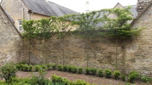 Garden 4 after