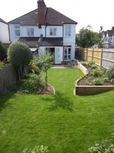 Back garden redesign after