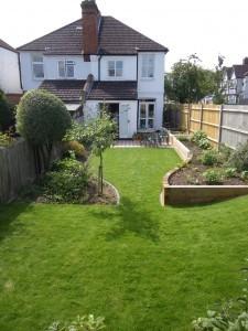 Back garden redesign after