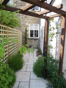 Path and Trellis After