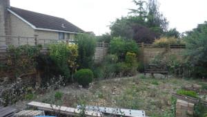 Garden Redesign 5