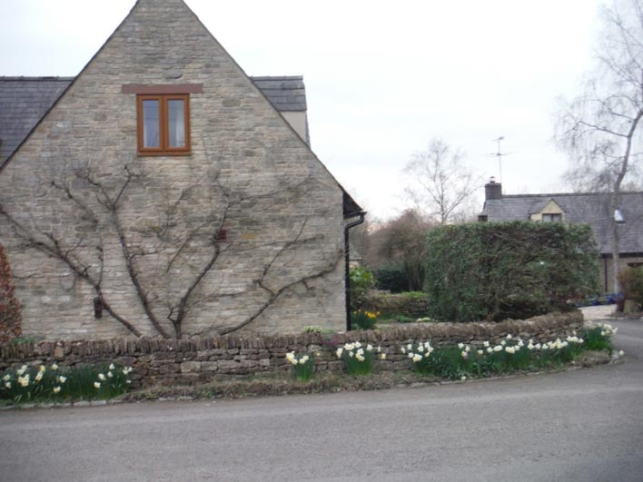 Park Lane Cottage - wall